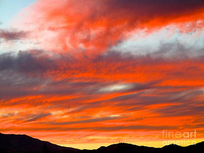 Photograph - Sunset In Motion by Phyllis Kaltenbach
