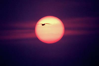 Sunset Art Print by John Foxx