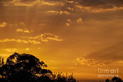 Photograph - Sunset Lightstreams 3 by Fran Woods