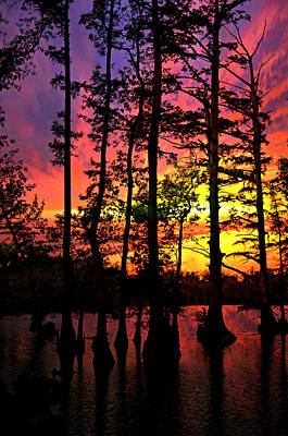 Sunset On Horseshoe Lake 1 Art Print by Marty Koch