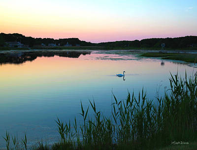 Swans Sunset Photograph - Sunset Over Crowell Pond by Michelle Wiarda