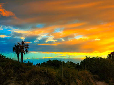 Sunset Palm Folly Beach  Art Print by Jenny Ellen Photography