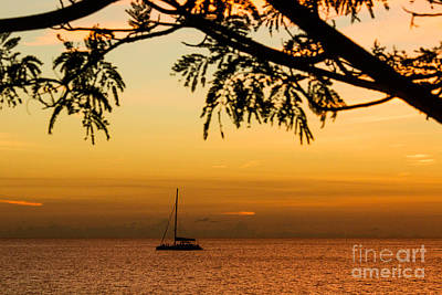 Sunset Sail Art Print by Rene Triay Photography