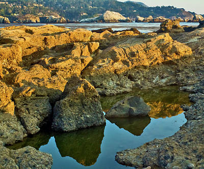 Sunset Tidepool Larry Darnell Point Lobos Central California Landscape Art Print by Larry Darnell