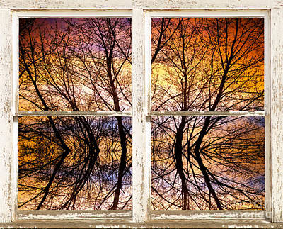 Sunset Tree Silhouette Colorful Abstract Picture Window View Art Print by James BO  Insogna
