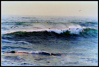 Art Print featuring the photograph Sunset Watch  by Kathy Bassett