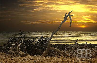 Sunset West II Art Print by Bruce Bain