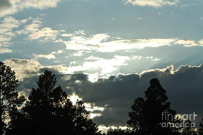 Photograph - Sunset White Mountains by Pamela Walrath