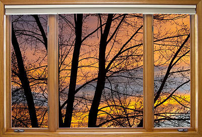 Tree Art Photograph - Sunset Window View by James BO  Insogna