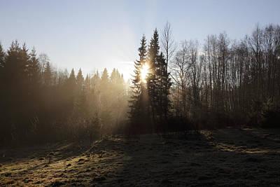 Anne Geddes - Sunshine breaking through early morning mist by Ulrich Kunst And Bettina Scheidulin