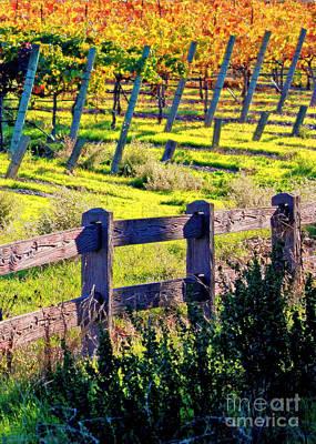 Sunshine On Fall Vineyard - Digital Painting Art Print by Carol Groenen