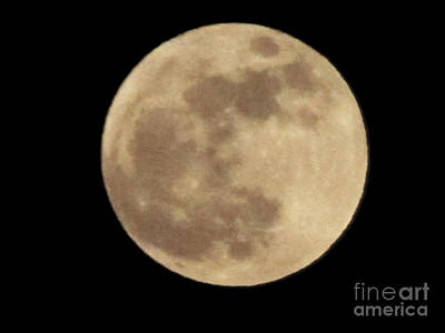 Photograph - Super Moon 2012 by Serena Ballard
