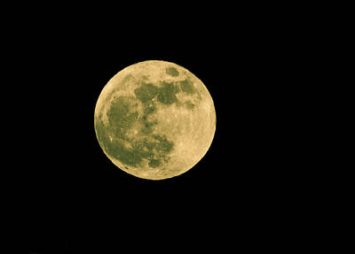 Photograph - Super Moon Over Kingston Washington by Ronda Broatch