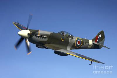 Photograph - Supermarine Spitfire Mk. Xviii Fighter by Daniel Karlsson