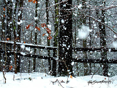 Supersized Snowflakes Art Print by Ruth Bodycott