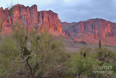 Superstitions Art Print by Patty Descalzi