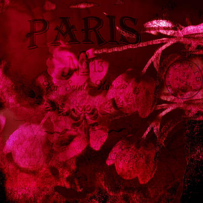 Red Abstract Photograph - Surreal Abstract Dark Red Impressionistic Tulips by Kathy Fornal
