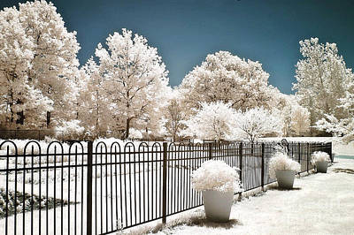 Surreal Dreamy Color Infrared Nature And Fence  Print by Kathy Fornal