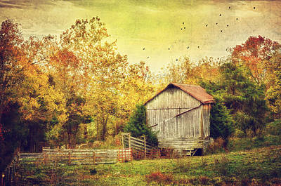 Surrounded By Fall Art Print by Kathy Jennings