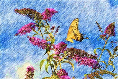 Swallowtail And Butterfly Bush Art Print by Heidi Smith