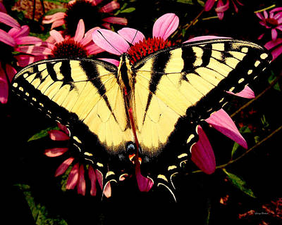 Art Print featuring the photograph Swallowtail Butterfly On A Purple Coneflower by George Bostian