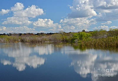 Photograph - Swamp Reflection by Carol  Bradley