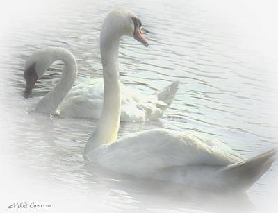 Mt Rushmore Royalty Free Images - Swans at the pond Royalty-Free Image by Mikki Cucuzzo