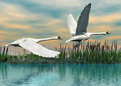 Digital Art - Swans In Flight by Walter Colvin