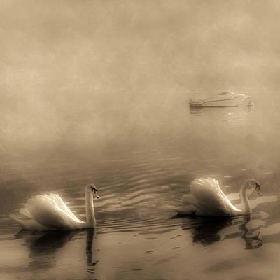 Swans Art Print by Joana Kruse