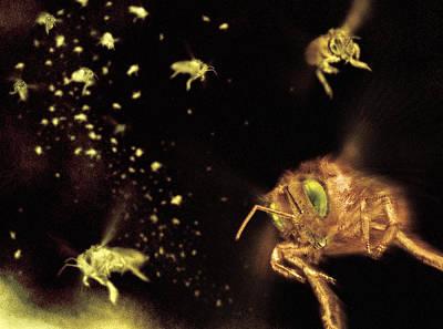 Apocrita Photograph - Swarm Of Bees by Ian Cuming