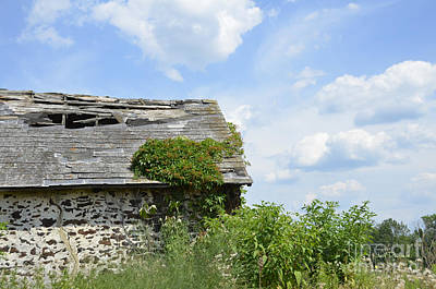 Photograph - Swede Run Barn 8 by Jan Daniels