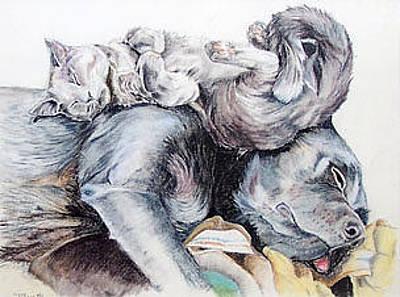Pastel - Sweet Dreams by Teresa Smith