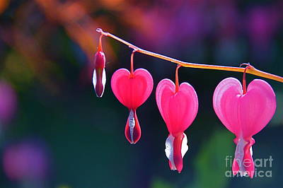 Photograph - Sweet Hearts by Byron Varvarigos