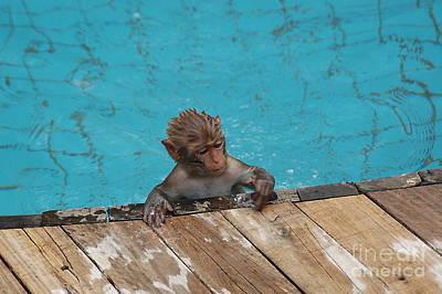 Swim Boy Art Print