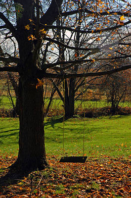 Nature Boy Photograph - Swing With Me by LeeAnn McLaneGoetz McLaneGoetzStudioLLCcom