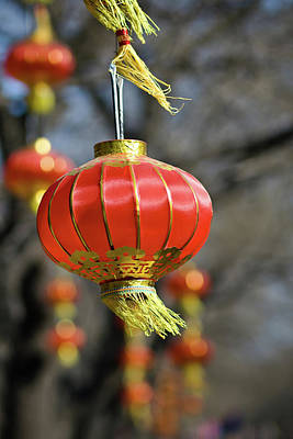 Swinging Chinese Lanterns Art Print by Jeremy Vickers Photography