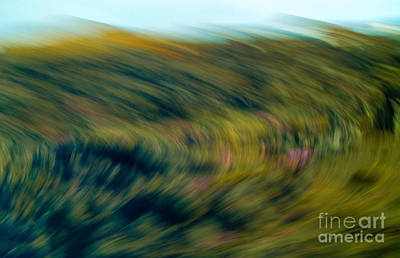 Photograph - Swirling Field by Michael Canning