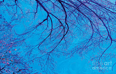 Art Print featuring the digital art Swirling Spring Winds by David Klaboe