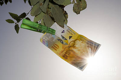 Swiss Franc Hanging In A Tree Art Print by Mats Silvan