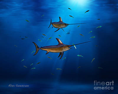 Swordfish Moon Art Print by Alex Suescun