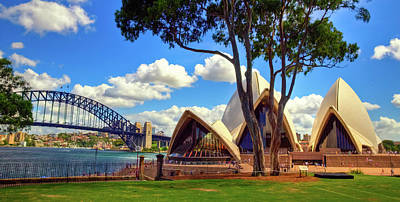 Photograph - Sydney Opera House And Red Gum Tree by Harry Strharsky