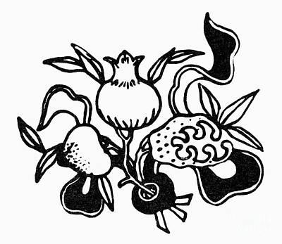 Fertility Symbols Wall Art - Photograph - Symbol: Three Fruits by Granger