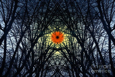 Art Print featuring the digital art Symmetry In Extremis Rebirthing by Rosa Cobos