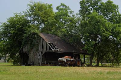 Lady Bug - T Barn 3 by Douglas Barnett
