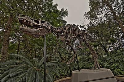 T-rex Hdr Original by Jason Blalock