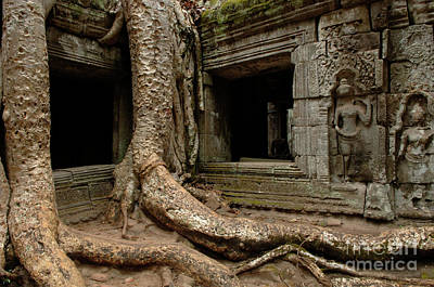 Photograph - Ta Prohm Silence 2 by Bob Christopher