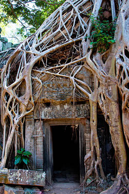 Ta Prohm Temple In Angkor, Cambodia Art Print by Asier