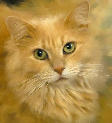 Painting - Tabby by Ron Morecraft