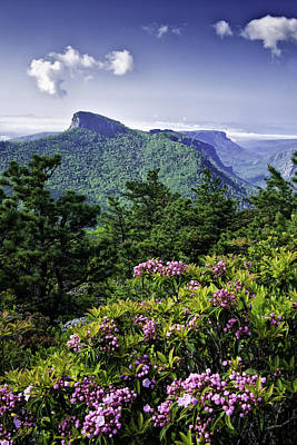 Mountain Laurel Photograph - Table Rock by Rob Travis