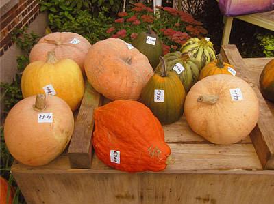 Photograph - Tagged Pumpkins by Nop Briex